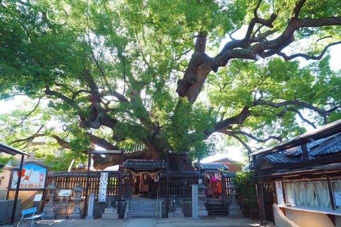 三島神社 大阪