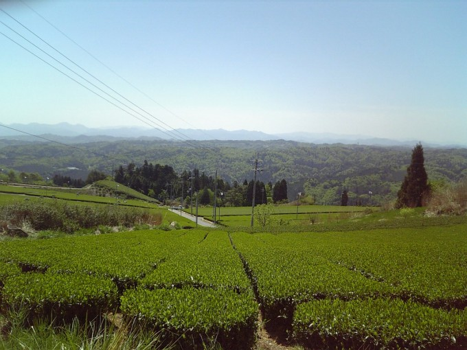 奈良県あるある 奈良