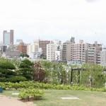 東京のゆっくりとリラックスできる公園を厳選