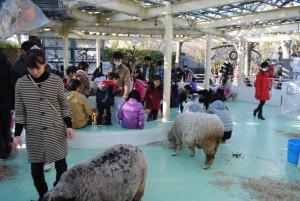 動物園 江戸川区自然動物園
