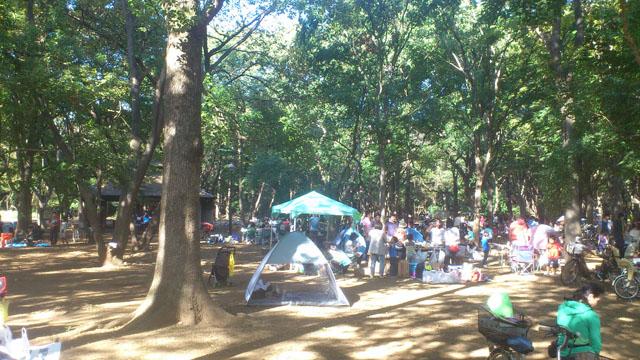 23区内でオススメのBBQができる公園を厳選 光が丘公園 | バーベキュー