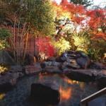 神奈川県で行きたい日帰り温泉スポット6選