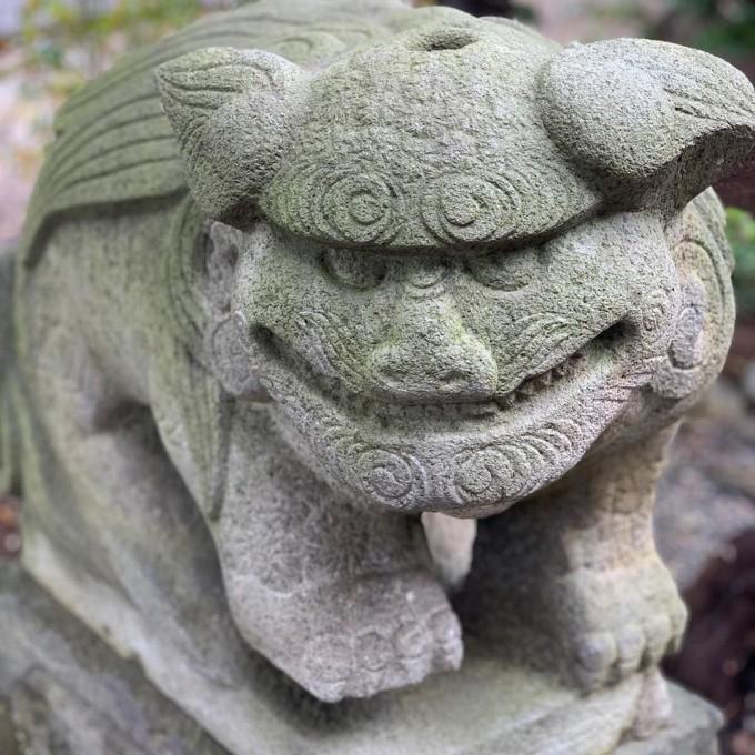 菊田神社 狛犬