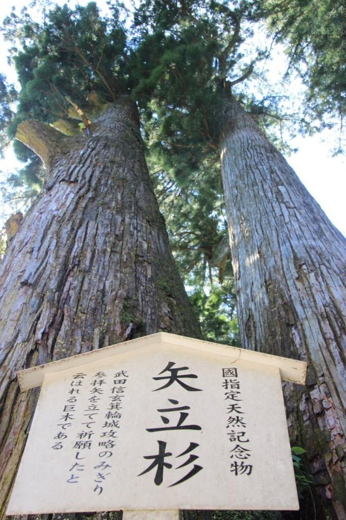 矢立杉 榛名神社
