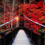 栃木県でおすすめの紅葉スポットを厳選