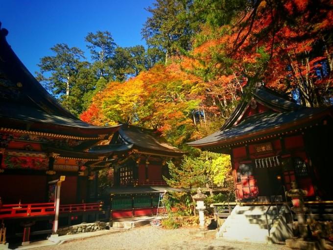 三峯神社 紅葉