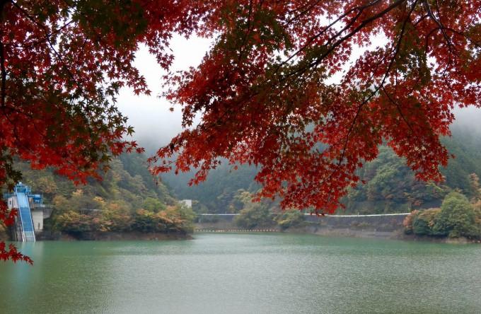 名栗湖 紅葉
