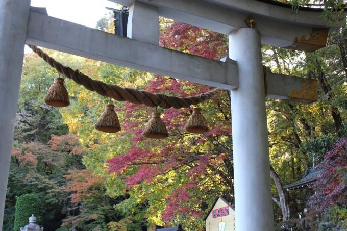 寳登山神社 紅葉