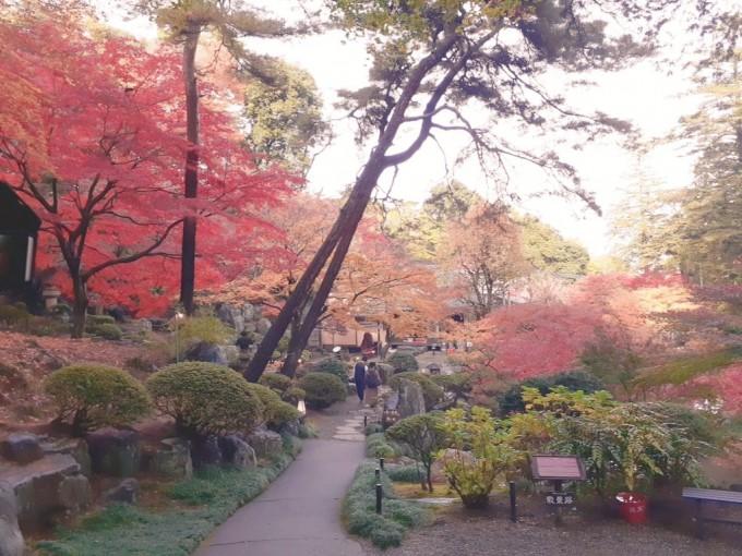 群馬 徳明園 紅葉