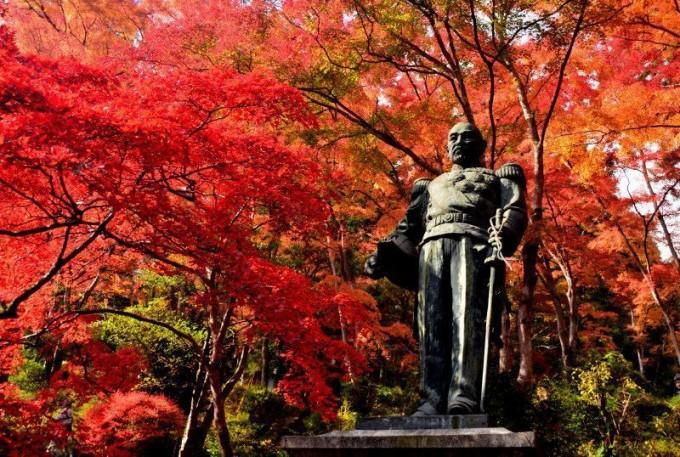 東郷公園 紅葉