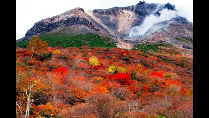 茶臼岳  紅葉