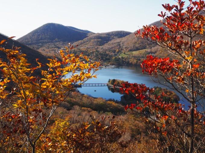 赤城山 地蔵岳 紅葉