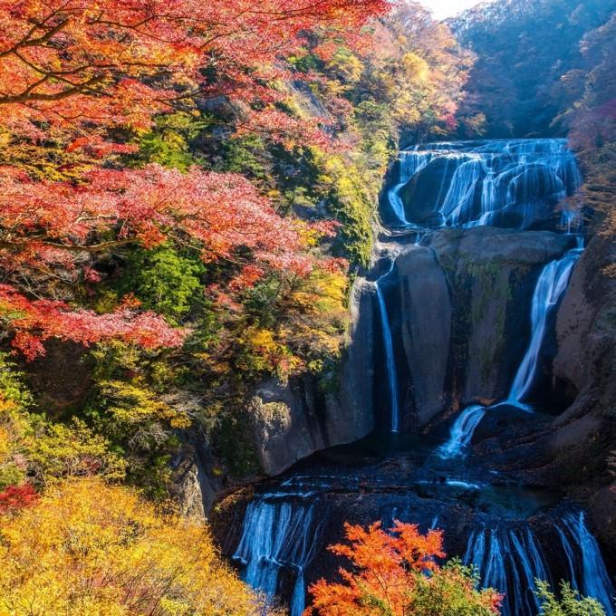 袋田の滝 紅葉