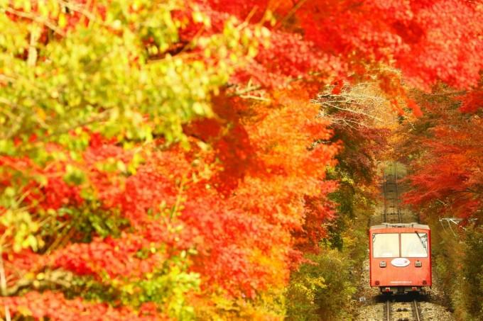 筑波山 紅葉