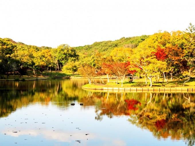 茨城 北山公園 紅葉