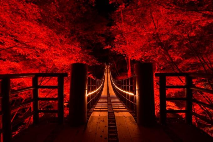 花貫渓谷 ライトアップ
