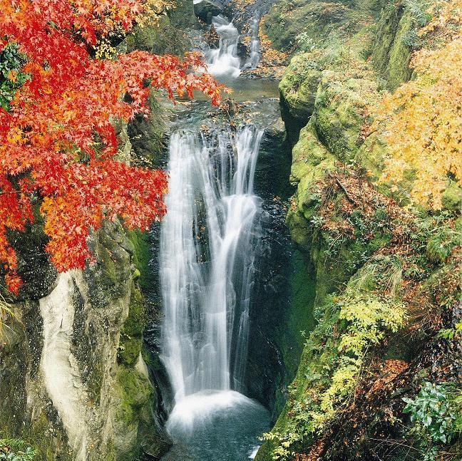 地蔵堂の滝 千葉