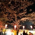 埼玉県でおすすめのお花見スポットを厳選