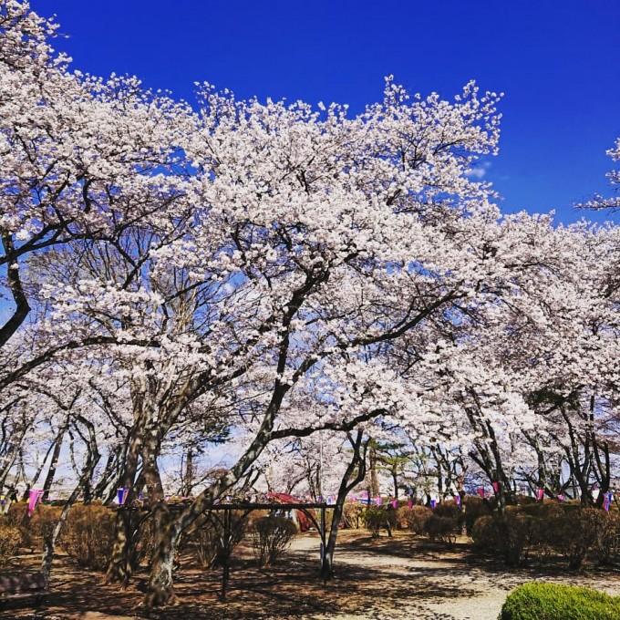 黒磯公園 栃木