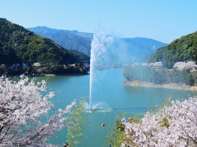下房ダム湖(熊本県球磨郡水上村)  桜の名所