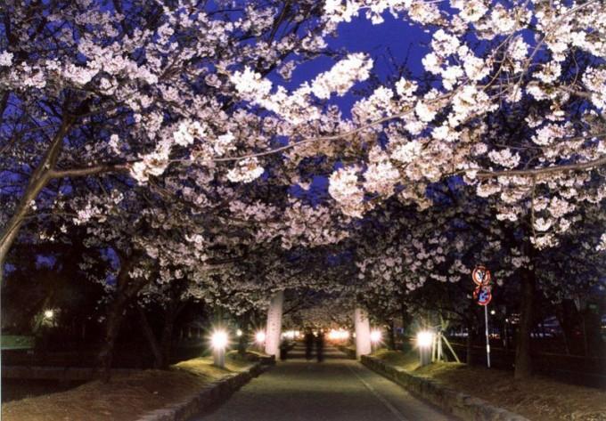 大村公園(二重馬場)(長崎県大村市)