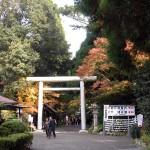 宮崎県の中で特にいってみたいパワースポットを厳選