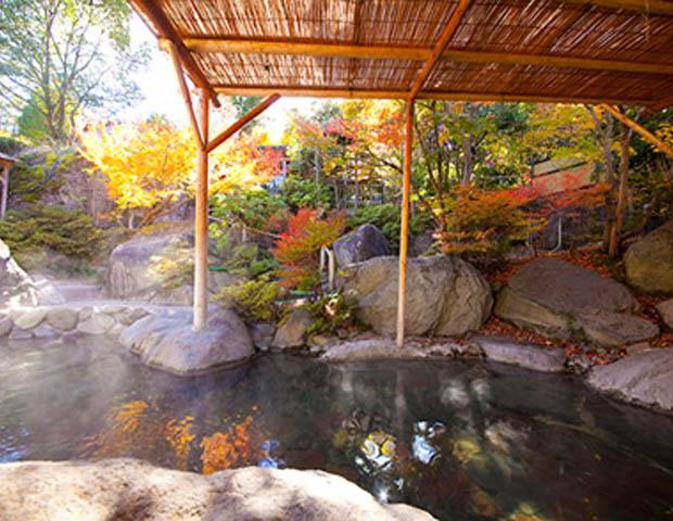 宝仙寺温泉