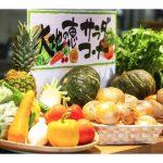 【宮崎県】おいしい朝活・モーニング・朝ごはんのおすすめ