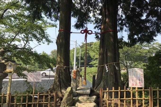 武雄神社3