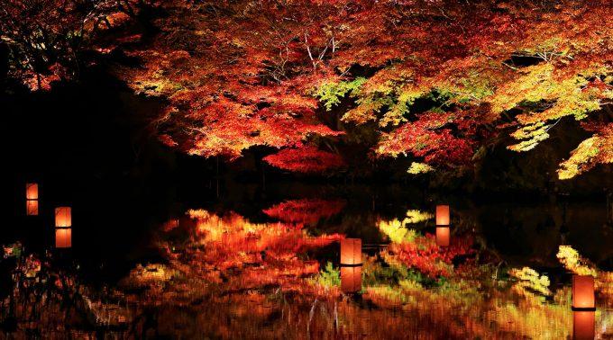 御船山楽園紅葉2