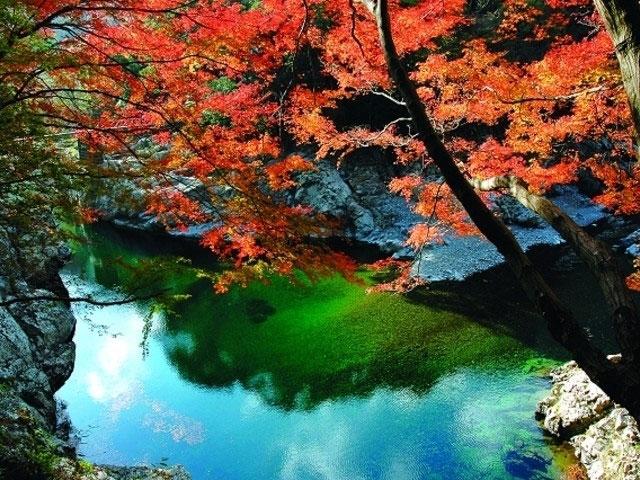 見立渓谷紅葉