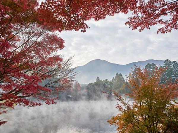 金鱗湖紅葉2