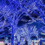 福岡県の冬イルミネーションを厳選