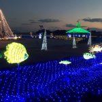 長崎県の冬イルミネーションを厳選