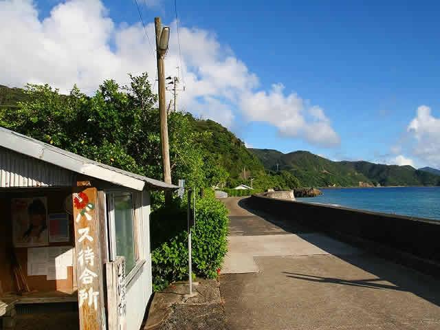 加計呂麻島キャッシュ