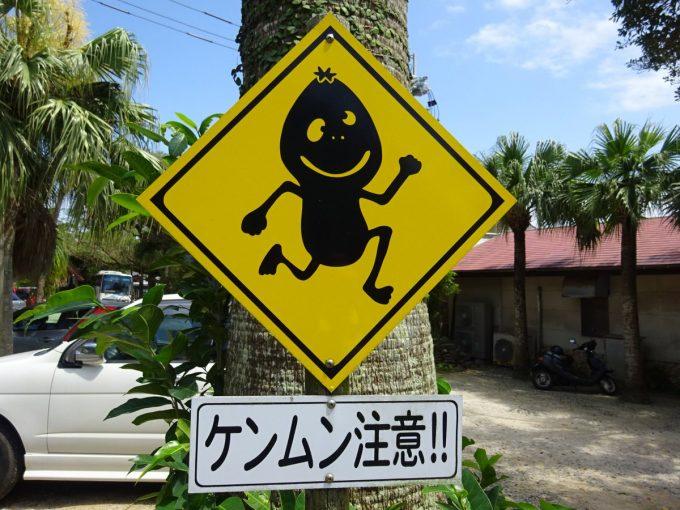 加計呂麻島ノープラン