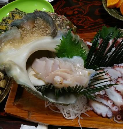 徳之島夜光貝