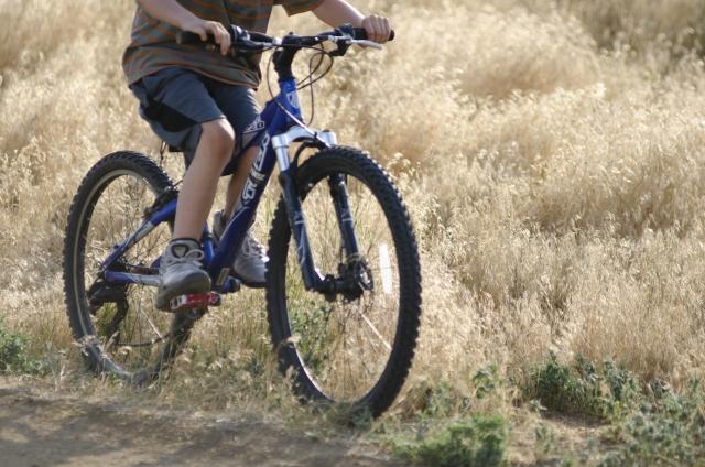 種子島自転車