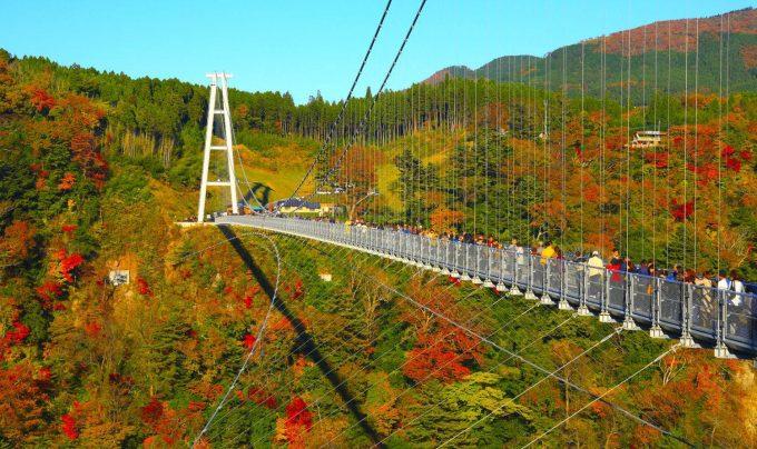 大分県 インスタ映え 吊り橋2