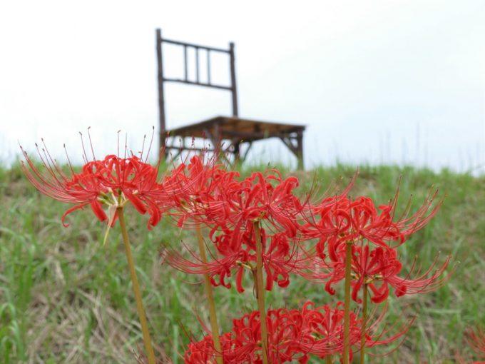 福岡 インスタ映え 巨大椅子3