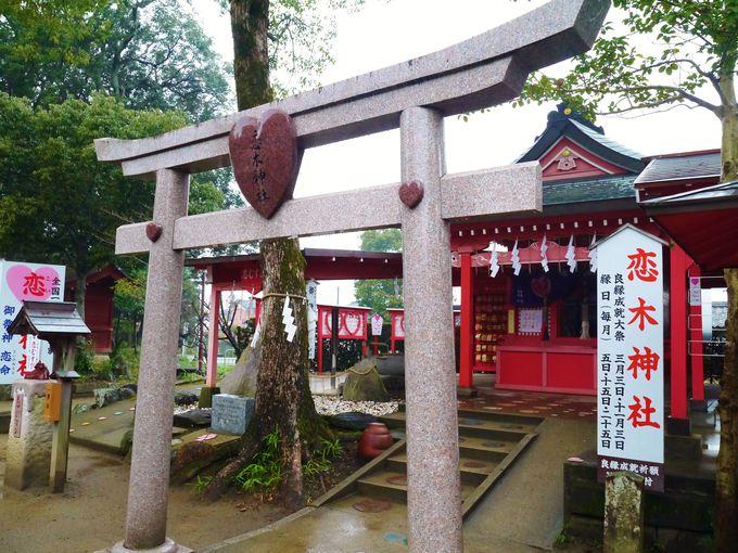 福岡 インスタ映え 恋木神社