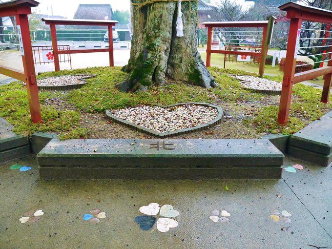 福岡 インスタ映え 恋木神社3