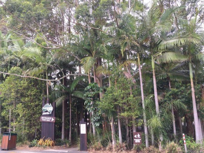 Australia ZOO gate