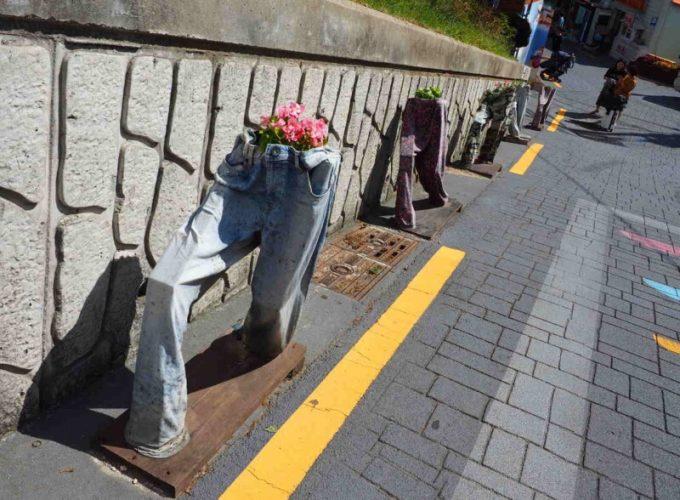 ズボンの花壇