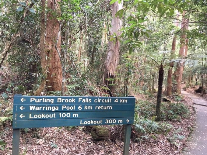 Purling Brook Falls signage