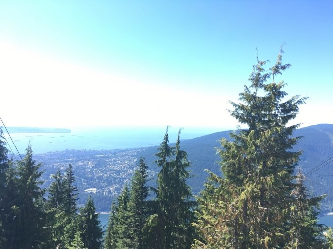 Grouse Grind top