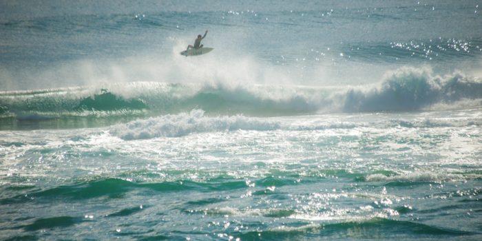 サーファーが大喜び!!高知の海は暴れ馬