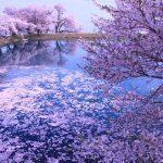 風光明媚な景色が楽しめる愛媛県の絶景スポット