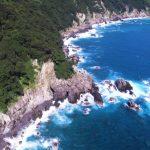 大月町柏島の見どころ!海の生き物とサンゴの楽園