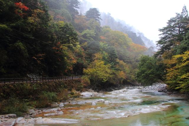 面河渓五色河原